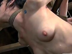 nipples punishment